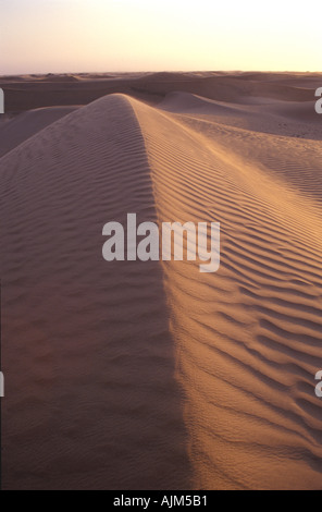 Sand dunes in the desert of Namib Naukluft Park in Namibia near Swakopmund along the Welwitschia Drive - Stock Image