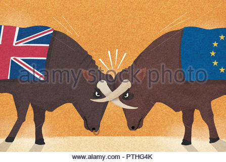 UK and European Union bulls with horns locked in conflict - Stock Image