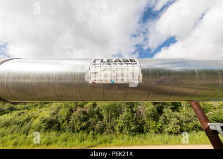 Looking up at the elevated Trans-Alaskan oil pipeline at the Alyeska Pipeline Visitors Center  in Fairbanks, Alaska. The 4-foot wide pipeline snakes through 800 miles of Alaskan wilderness carrying crude oil from Prudhoe Bay to Valdez, Alaska. - Stock Image