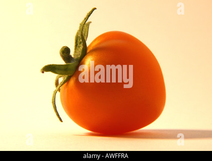 Yellow tomato 1 of 2 - Stock Image