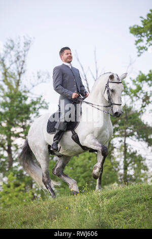 Pure Spanish Horse, Andalusian. Blind gelding performing a piaffe with its rider and owner Sandro Huerzeler. Switzerland - Stock Image