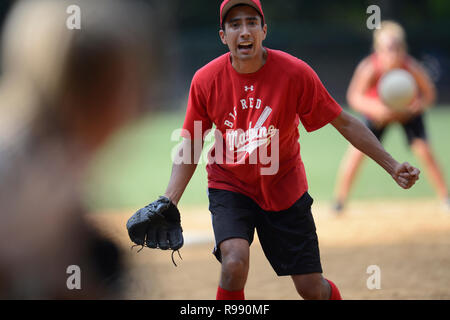 Softball players in Central Park in New York City - Stock Image