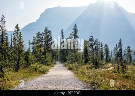 Yoho National Park, British Columbia. - Stock Image