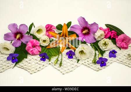 White background with an openwork border,located in the middle,is covered with heads of flowers of purple hibiscus, white Lisianthus, raspberry oleand - Stock Image