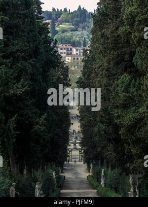 Italy, Tuscany, Florence, Palazzo Pitti, Boboli Gardens, path lined with cypresses - Stock Image