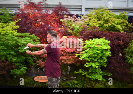 Finishing touches are applied to a display during preparations for the RHS Chelsea Flower Show at the Royal Hospital Chelsea, London. - Stock Image