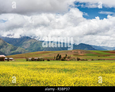 Views of the fields surrounding the archaeological site of Moray in Peru, near Cuzco and the village of Maras - Stock Image