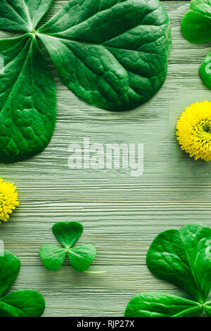 Shamrocks and Yellow Chrysanthemums with Space for Copy - Stock Image