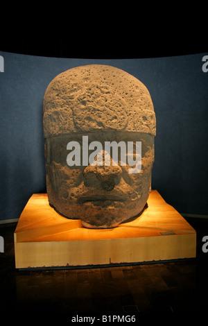 Olmec Stone Head Pre Columbian Art National Museum of Anthropology Chapultepec Park Mexico City Mexico - Stock Image