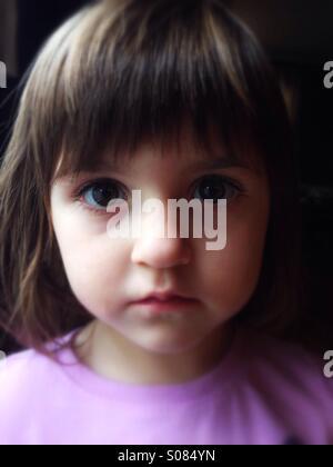 Caucasian toddler girl portrait - Stock Image