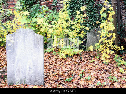 Unmarked worn grave in stone with leaves and ivy growing in a graveyard - Stock Image