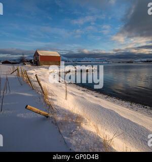 Barn in coastal winter landscape, Vestvågøy, Lofoten Islands, Norway - Stock Image