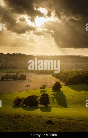 Evening light after a storm casts long shadows over the Dorset countryside - Stock Image