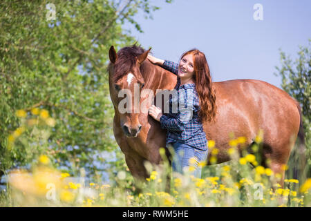 Missouri Fox Trotter. Red-haired young woman with chestnut gelding on a pasture. smooching. Switzerland - Stock Image