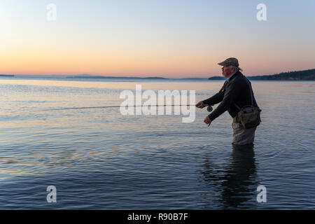 A side view of a fly fisherman at sunrise casting for salmon and searun coastal cutthroat trout from a salt water beach at a beach on the north west c - Stock Image