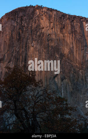 El Capitan. Yosemite Valley, Yosemite National Park, Mariposa County, California, USA - Stock Image
