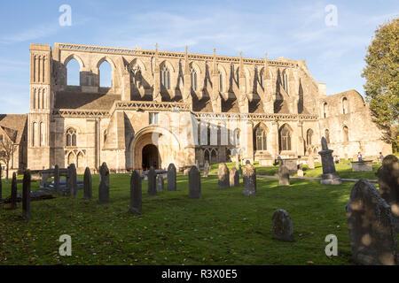 Malmesbury abbey church, Malmesbury, Wiltshire, England, UK - Stock Image