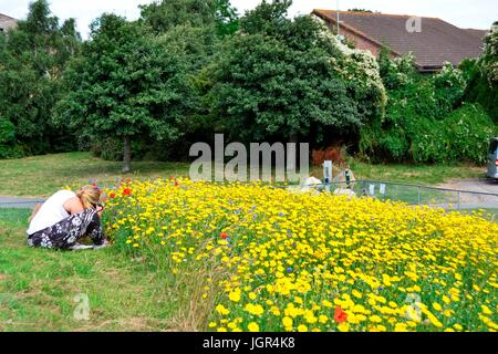 Bournemouth, UK. 10th July, 2017. Weather sunny and warm Bournemouth, UK Credit: Ajit Wick/Alamy Live News - Stock Image