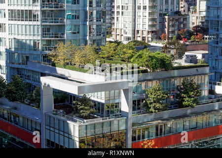 Rooftop gardens on modern office buildings in downtown Vancouver, BC, Canada - Stock Image
