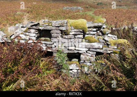 Stone sideboard or dresser with cubbyholes and shelves in ruined old stone croft building, Boreraig, Isle of Skye, Scotland, UK - Stock Image