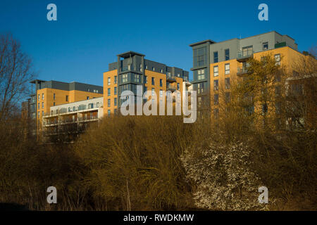 Apartments on Kennet Island, Reading, Berkshire. - Stock Image