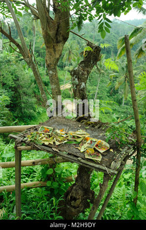 Sanggah crucuk small temporary shrine with offerings, Bali, Indonesia - Stock Image