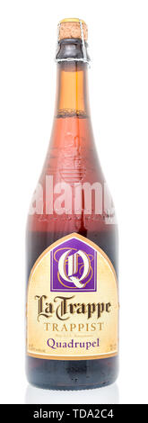 Winneconne, WI - 12 May 2019 : A bottle of La Trappe Trappist quadrupel ale with cork on an isolated background - Stock Image