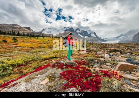 Hiker, Barren Landscape, Glacier Valley, Mount Athabasca with Saskatchewan Athabasca Glacier, Icefields Parkway, Jasper National - Stock Image