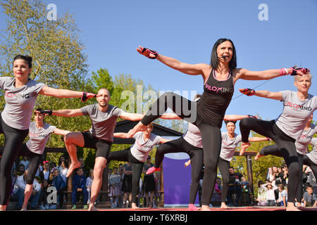 Nis, Serbia - April 20, 2019 Large group of people participating in the free public Piloxing class in summer at park on sunny spring day - Stock Image