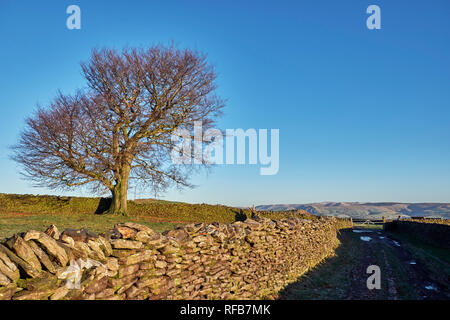 Green Lane near Chapel-en-le-Frith. Peak District National Park, Derbyshire, England. - Stock Image