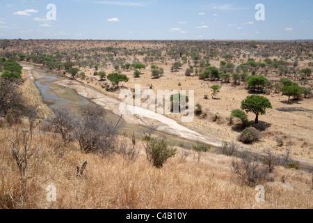 Tanzania, Tarangire. A trickle of water runs through the Tarangire River during the dry season. - Stock Image