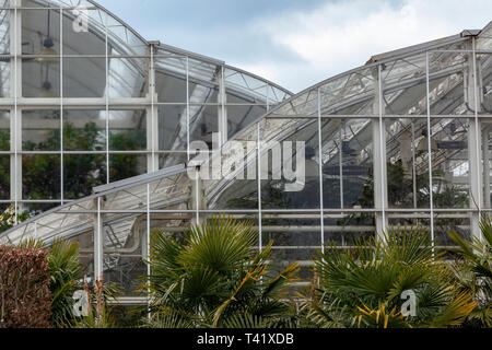 The glasshouse at RHS Woking - Stock Image