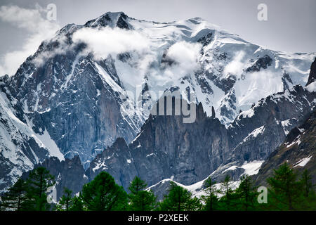 Glacier of Mont Blanc seen from the Ferret Valley in spring season with clouds on the summit and trees in foreground, Aosta Valley - Italy - Stock Image