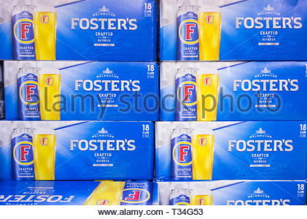 Foster's beer packs on a supermaket shelt in the UK - Stock Image