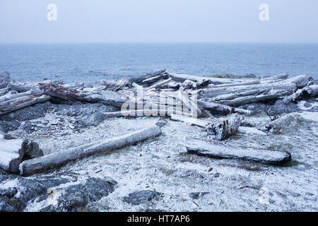 Cattle Point. Oak Bay, BC. Canada - Stock Image