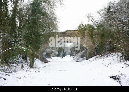 Pathway in Winter. - Stock Image