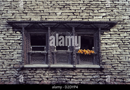 Carved wooden window frame in Dana in Kali Gandaki valley on Annapurna circuit Himalayas Nepal with ripening maize - Stock Image