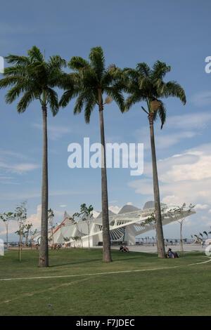 View of the Museu do Amanhã (Museum of Tomorrow) with three palm trees. Praça Mauá, Rio de Janeiro, - Stock Image