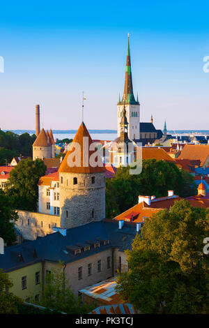 Tallinn skyline, view of the medieval Lower Town Wall and towers with St Olaf's Church in the distance, Tallinn, Estonia. - Stock Image