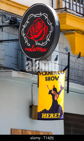 Signs outside of a Flamenco Club in Seville - Stock Image