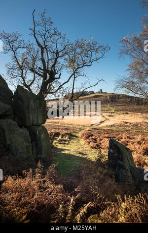 Autumnal scene at Bradgate Park, with Old John folly shown in the background, Leicestershire, England, UK - Stock Image