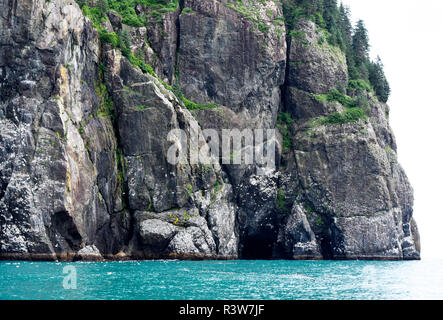 USA, Alaska, Seward sea caves - Stock Image