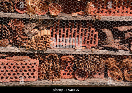 freshly created insect hotel made of different material, empty insect hotel close up view - Stock Image