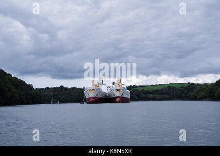 Reefer ships, refrigerated cargo ships used to transport perishable goods, laid up up in the Fal River, Falmouth, - Stock Image