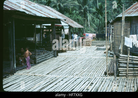"""Longhouses, the whole complex on stilts, the """"patio"""" is used as a working area; Kuching area, Sarawak, NW Borneo, - Stock Image"""