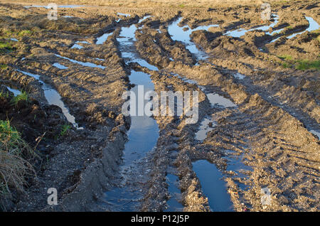 Muddy Waterlogged Field UK - Stock Image