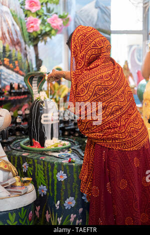 A devout Hindu woman in a colorful sari pours milk over a Shiva Lingam at a Hindu temple in Jamaica, Queens, New York. - Stock Image