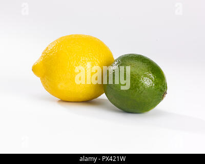 a single lemon and lime on a white background - Stock Image