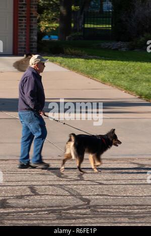 A senior Caucasian man walking a dog on a neighborhood street in autumn weather. USA. - Stock Image