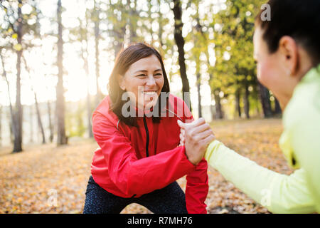 Two female runners stretching outdoors in forest in autumn nature, shaking hands at sunset. - Stock Image